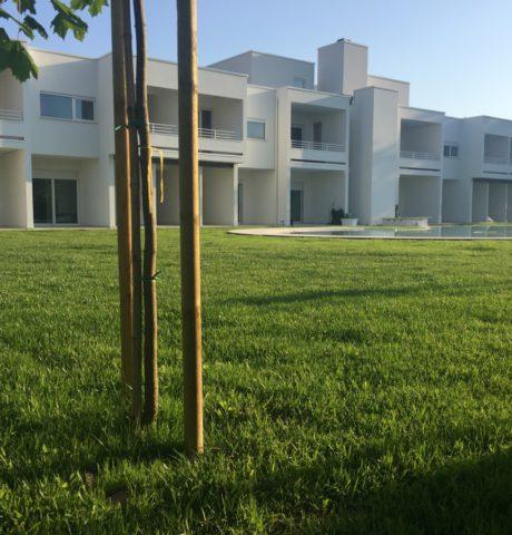 my-house-legno (2)
